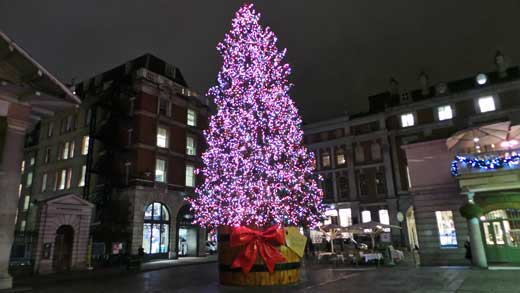 The Christmas Tree In Covent Garden.